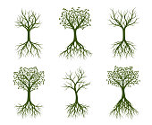 Set of green Trees. Vector illustrations and graphic elements. Garden and plants.
