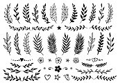 set of hand drawn tree branches with leaves, flowers and design elements