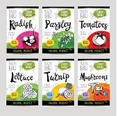 Set of colorful stickers in sketch style, food, spices, white background Radish, parsley, tomatoes, lettuce, turnip, mushrooms Vegetables, farm fresh, locally grown. Hand drawn vector illustration.