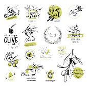 Set of hand drawn watercolor stickers and badges of olive oil. Vector illustrations for olive oil labels, packaging design, natural products, restaurant
