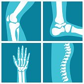 Set of human joints, knee joint, elbow joint, ankle joint, wrist, skeletal spinal bone structure of Human Spine, emblem or sign of medical diagnostic center or clinic, flat vector illustration.