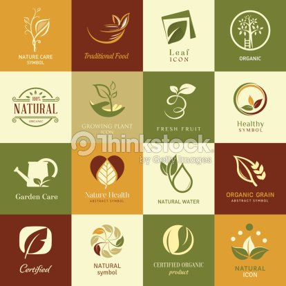 Set Of Icons And Symbols For Nature Health And Organic Vector Art