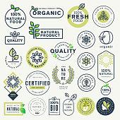 Vector illustration concepts for web design, packaging design, promotional material.