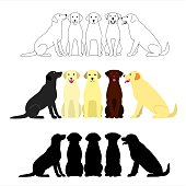 set of labrador retriever group.