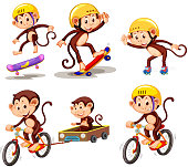 Set of monkey character with activity illustration