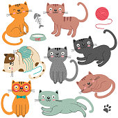 set of of isolated cats character  - vector illustration, eps