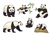 Pandas in cartoon style - adults and babies. Vector illustration. EPS8