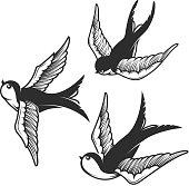 Set of swallow illustrations isolated on white background. Design elements for emblem, sign, badge, t shirt. Vector illustration