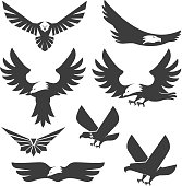 Set of the eagles icons and logo templates. Flying eagle.
