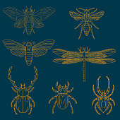 Set of the insects. Design elements for logo, label, emblem,  insignia, sign, identity, logotype, poster.