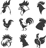 Set of the roosters icons. Chicken heads. Design elements for label, emblem, sign, brand mark. Vector illustration.