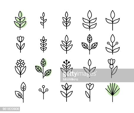 Set of thin line leaf icons vector : arte vetorial