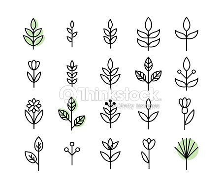 Set of thin line leaf icons vector : stock vector
