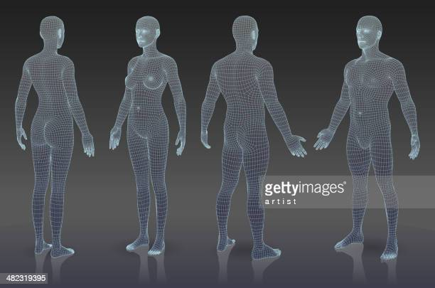 Set of three dimensional bodies.