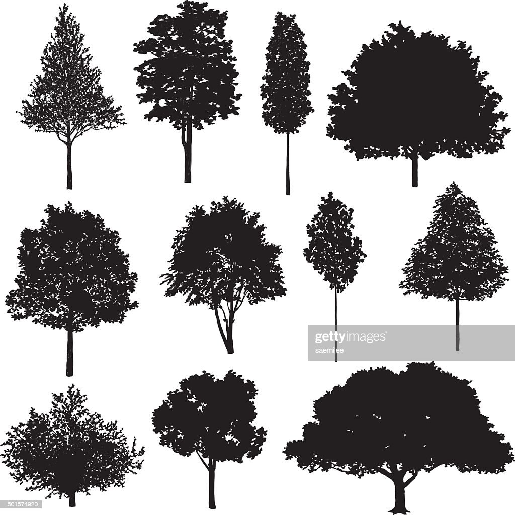 set of tree drawings vector art