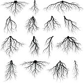 Set of tree roots. roots silhouette vector Illustration.