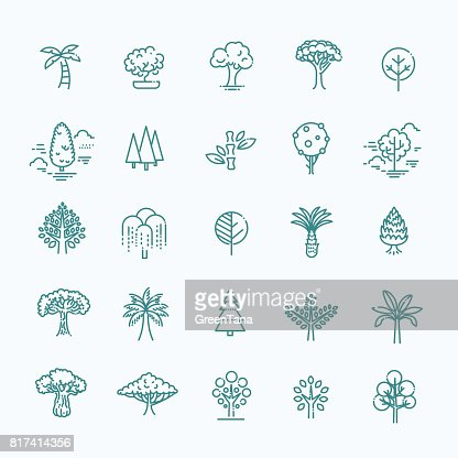 Set of Tree shape Vector Line Icons : stock vector