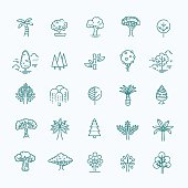 Includes leaf, forest, trees, botany and more