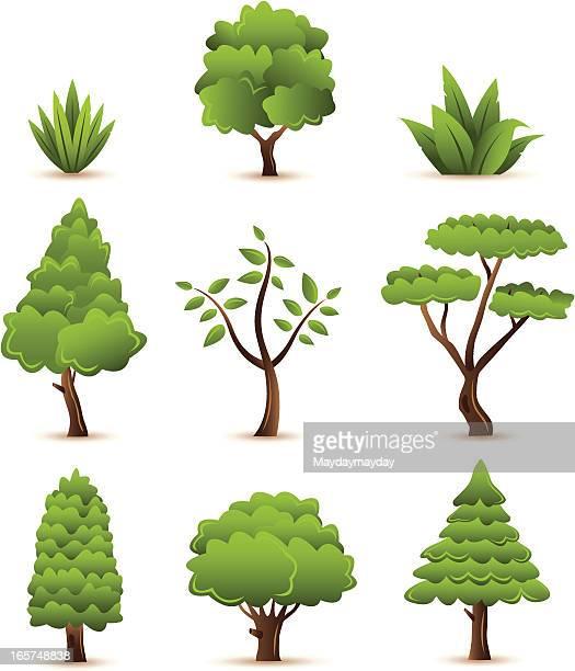 Ensemble de plantes et arbres