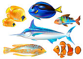Set of tropical sea fishes. Vector illustration.