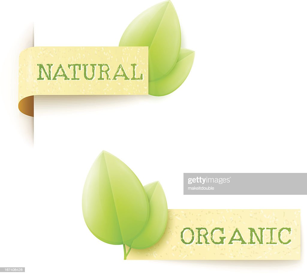 set of two paper labels eco design with text : Vector Art