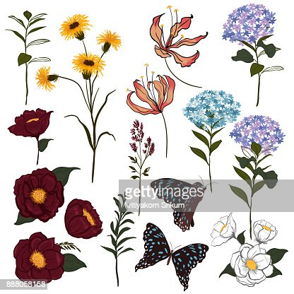 Set of  vector  beautiful artistic bright botanic garden with blooming flowers and butterflies. : Vector Art