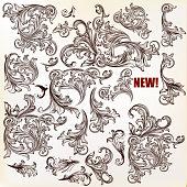 Calligraphic vector vintage design elements, flourishes, ornaments in retro style