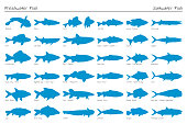 Set of vector silhouette fish. Freshwater and saltwater.