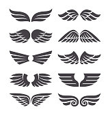 Set of different vector wings isolated on white background. Vector wing shapes. Wing icons.