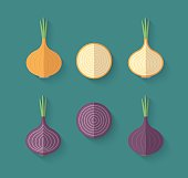 Set of Vegetables in a Flat Style with an Oblique Blend Shadow - Onion