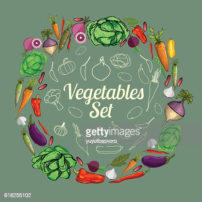 Set of vegetables. Vector illustration. : Arte vetorial