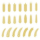 Set of Wheat or barley icon, flat design vector