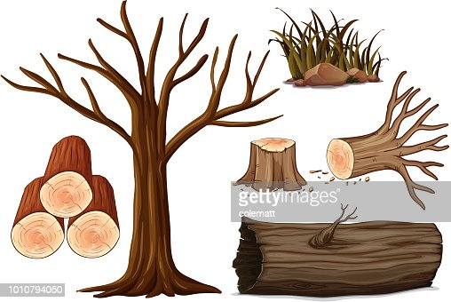 A Set of Wood : stock vector