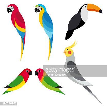 set parrot 2 : stock vector