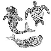 Set sea animals. Black dolphin, whale and turtle isolated on white background. Hand Drawn aquatic doodle vector illustration. Sketch for tattoo or makhenda. Animal sea collection. Ocean life.