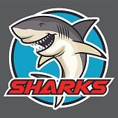 Shark vector badge