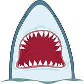 Shark open mouth, vector illustration on white background