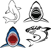 Vector illustration of shark tattoo