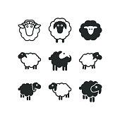 Sheep logo icon template