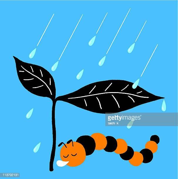 Protezione dalla pioggia