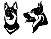 portrait of shepherd police dog