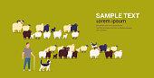 shepherd with stick and dogs herding flock of white black sheeps male farmer breeding sheep wool farm concept farmland flat full length copy space horizontal vector illustration