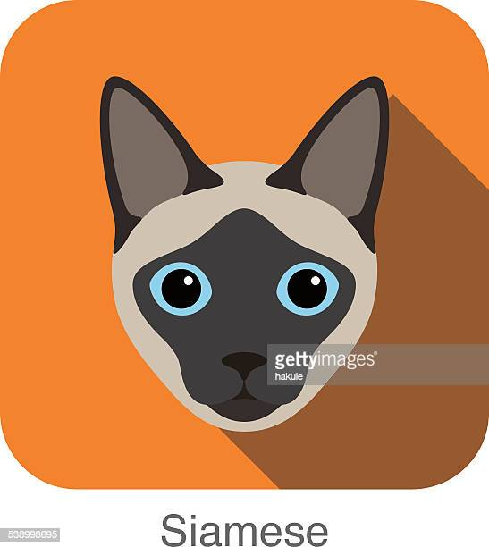 Siamese, Cat breed face cartoon flat icon design