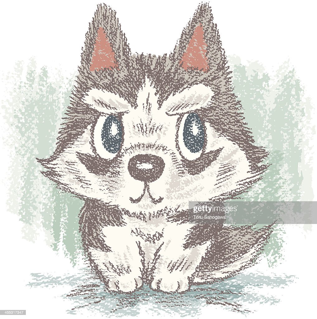 siberian husky vector art getty images