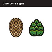 Signs of a cone or inflorescence for an icon or logo