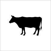 Silhouette of a standing cow. Side view. Vector illustration isolated on white background