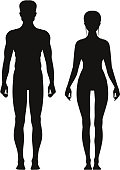 Silhouette of sporty male and female standing front view. Vector anatomy models girl and boy mannequin illustration
