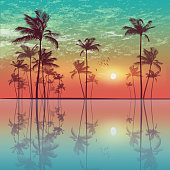 Waterfront Silhouette of tropical palm trees  at sunset or sunrise, with cloudy sky and reflection in water. Highly detailed  and editable