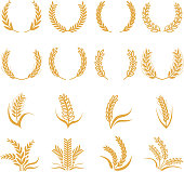 Silhouette of wheat. Corn vector symbols isolated on white. Wreath curve foem wheat, organic farming grain illustration