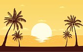 Silhouette palm tree on beach under sunset sky background (vector)